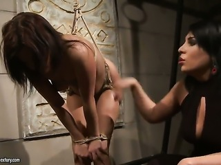 Brunette Amina and Kelly Roshe show their love for pussy eating
